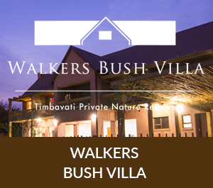 bush-villa-icon-2